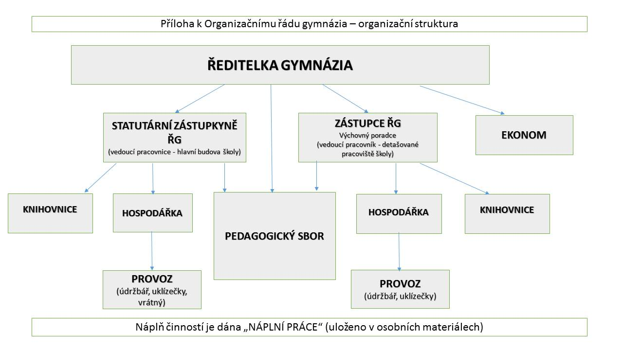 organizační struktura_pavouk