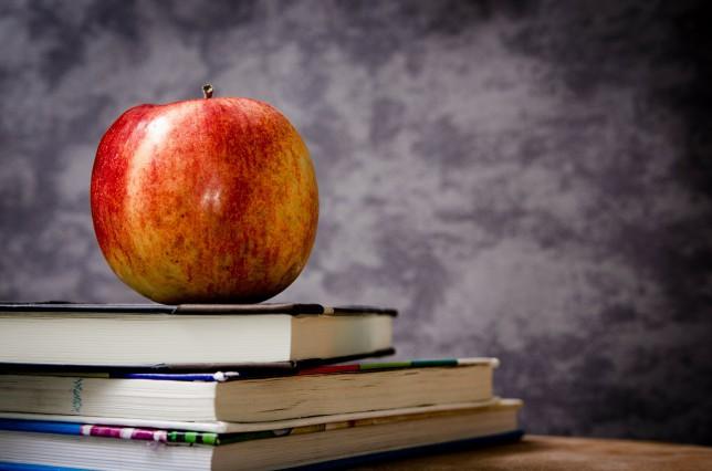 Rozdělení studentů do tříd pro Školní rok 2016/2017
