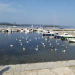 FOTOGALERIE Chorvatsko, Biograd na Moru - září 2016