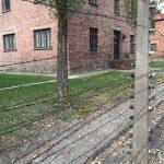 Školní exkurze v Osvětimi a Krakově
