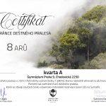 Projekt Občan kvarty A – Úbytek deštných pralesů