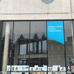 Výstava Umění do výloh